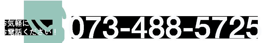 0734885725